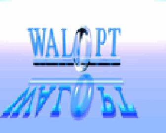 jpcollette@walopt.com